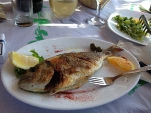 piatto-pesce-alla-griglia-albaniainsieme.
