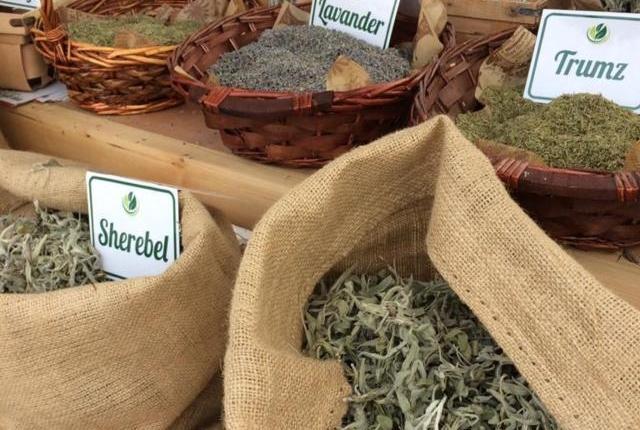 sacchi- erbe-aromatiche-essiccate-albaniainsieme.